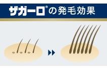 ザガーロ(小)